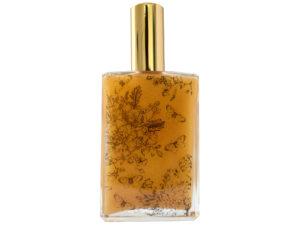 Sugar Cane & Vanilla Bean Body Gloss